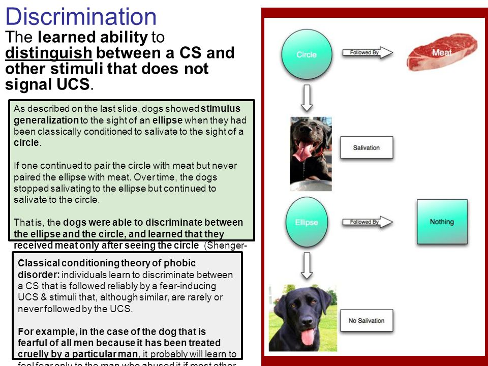 Discrimination The learned ability to distinguish between a CS and other stimuli that does not signal UCS. As described on the last slide, dogs showed