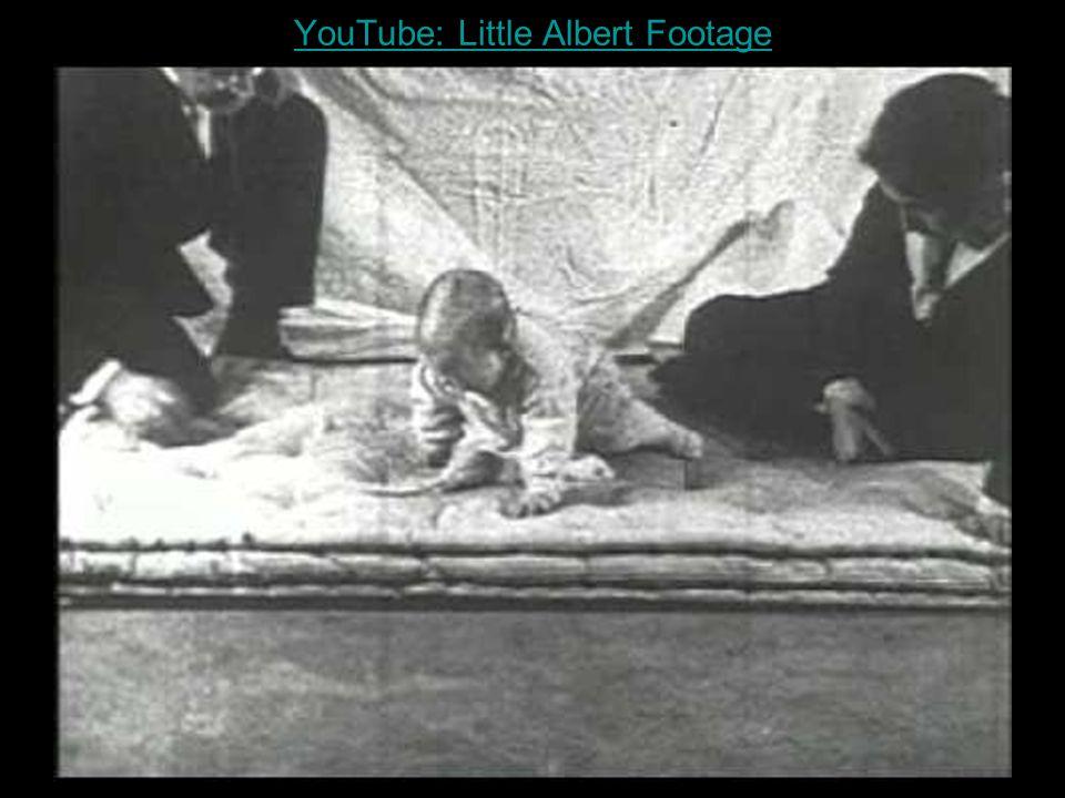 YouTube: Little Albert Footage