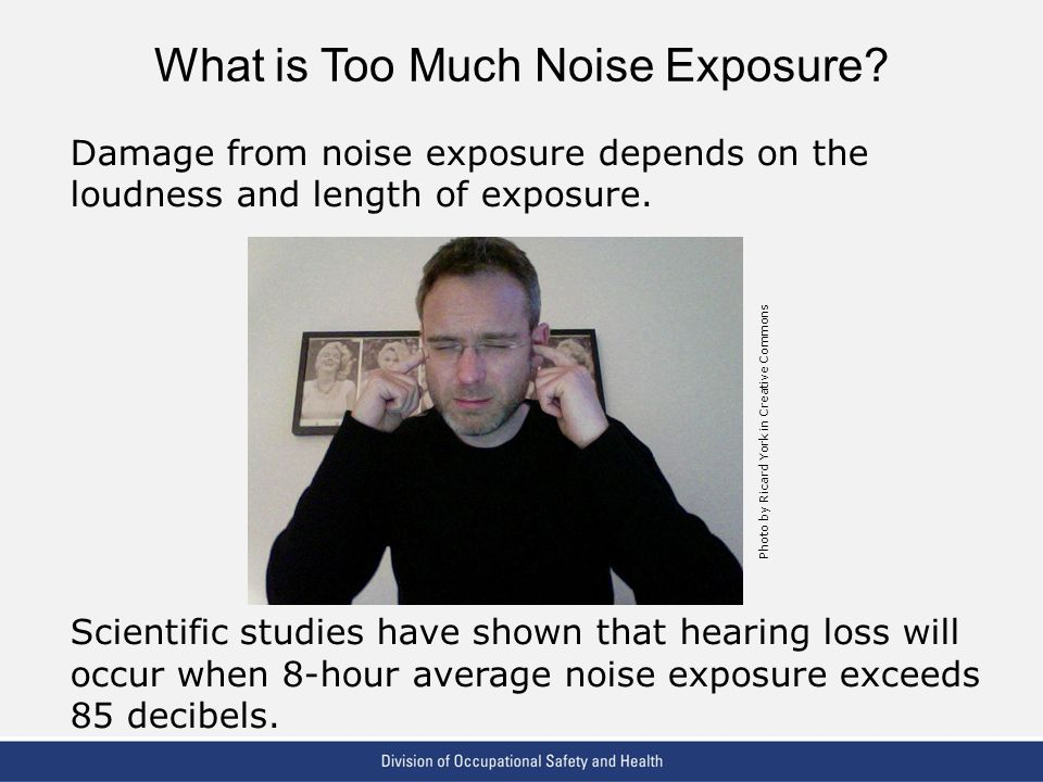 VPP: The Standard of Excellence in Workplace Safety and Health What is Too Much Noise Exposure.