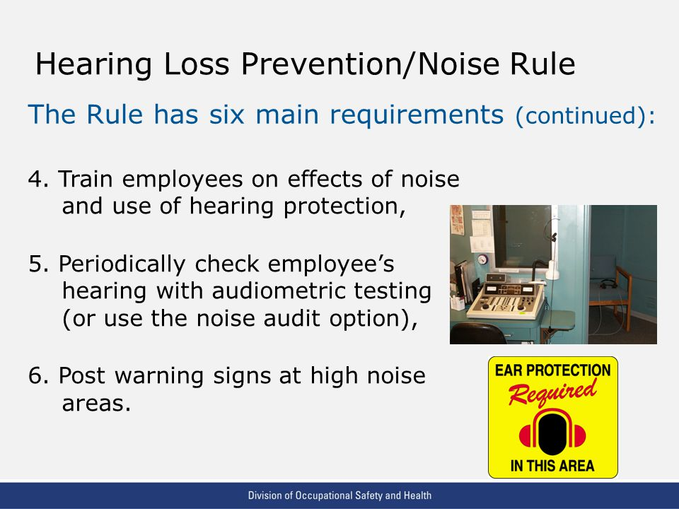 VPP: The Standard of Excellence in Workplace Safety and Health Hearing Loss Prevention/Noise Rule The Rule has six main requirements (continued): 4.