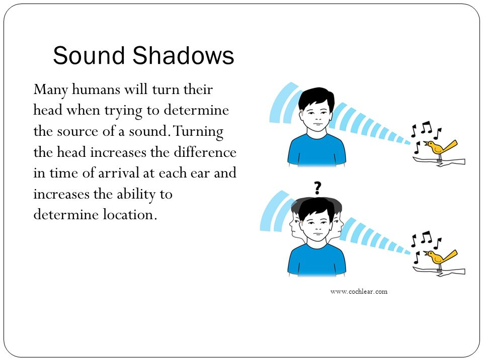 Sound Shadows The effect has been shown to be less important than the split-second time difference in each if the two ears receiving the same sound.