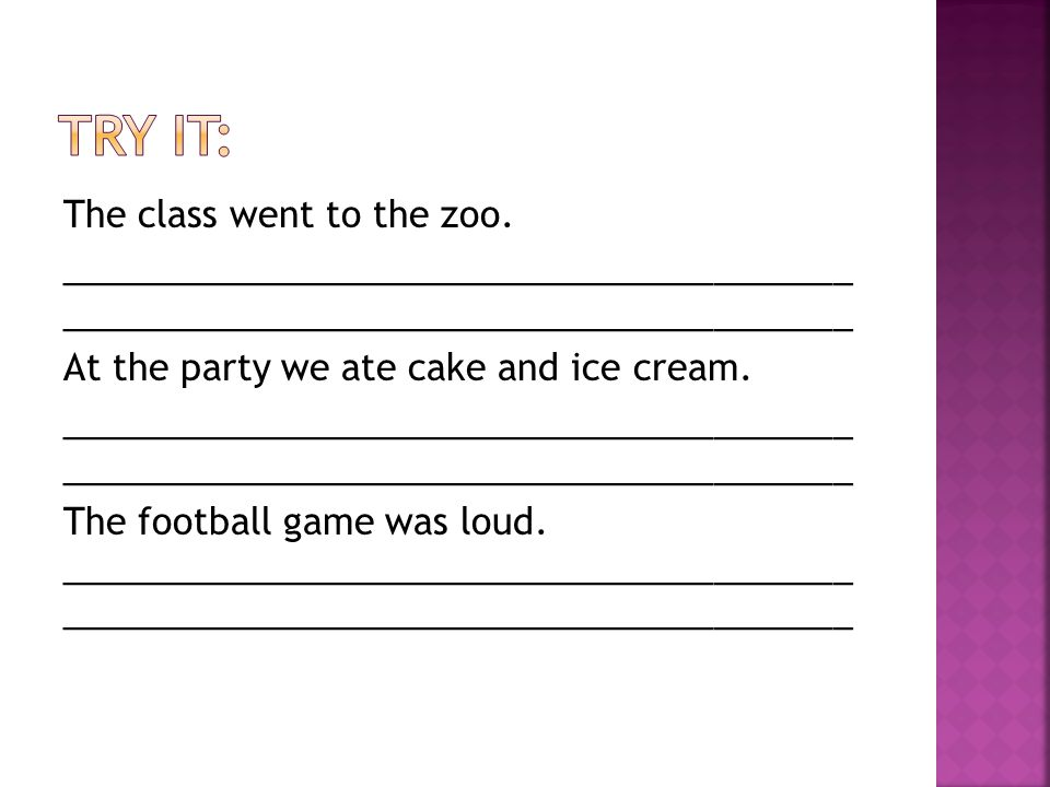 The class went to the zoo.________________________________________ At the party we ate cake and ice cream.________________________________________ The football game was loud.