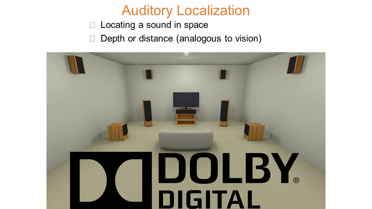 Auditory Localization ★ Locating a sound in space ★ Depth or distance (analogous to vision)