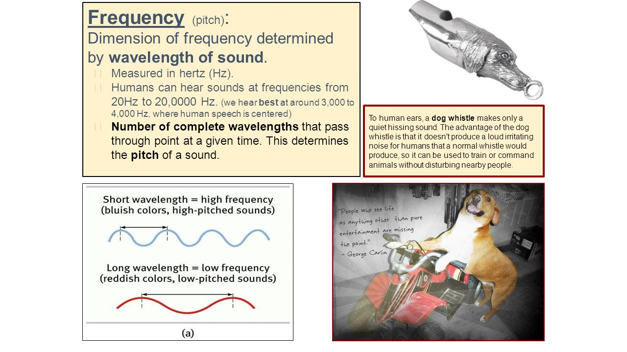 Intensity (loudness) : Amount of energy in a wave determined by amplitude relates to perceived loudness.