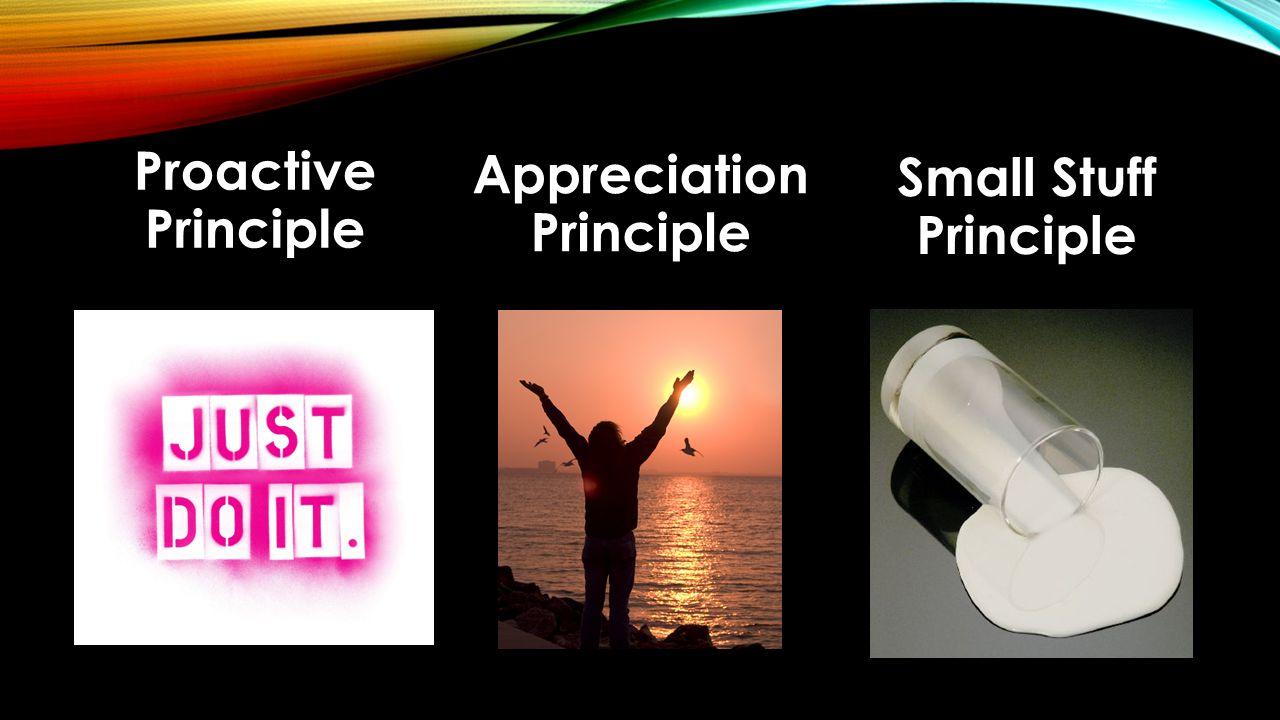 Proactive Principle Appreciation Principle Small Stuff Principle