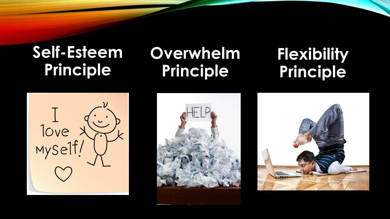 Self-Esteem Principle Overwhelm Principle Flexibility Principle