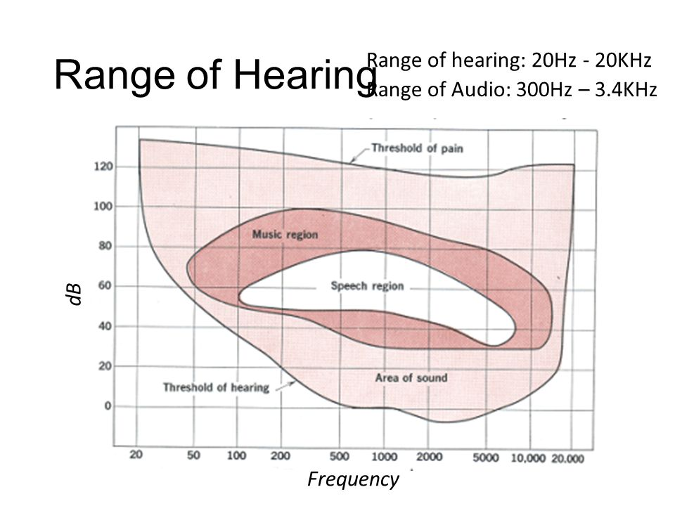 Application: Hearing Reference: http://hyperphysics.phy-astr.gsu.edu/hbase/sound/hearcon.html