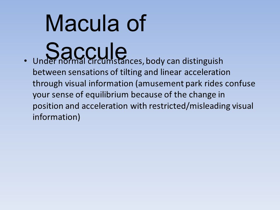 Macula of Saccule Under normal circumstances, body can distinguish between sensations of tilting and linear acceleration through visual information (a