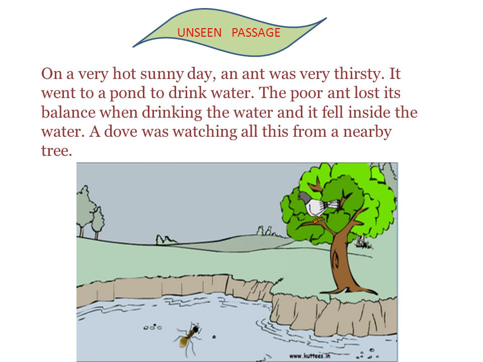 On a very hot sunny day, an ant was very thirsty. It went to a pond to drink water. The poor ant lost its balance when drinking the water and it fell