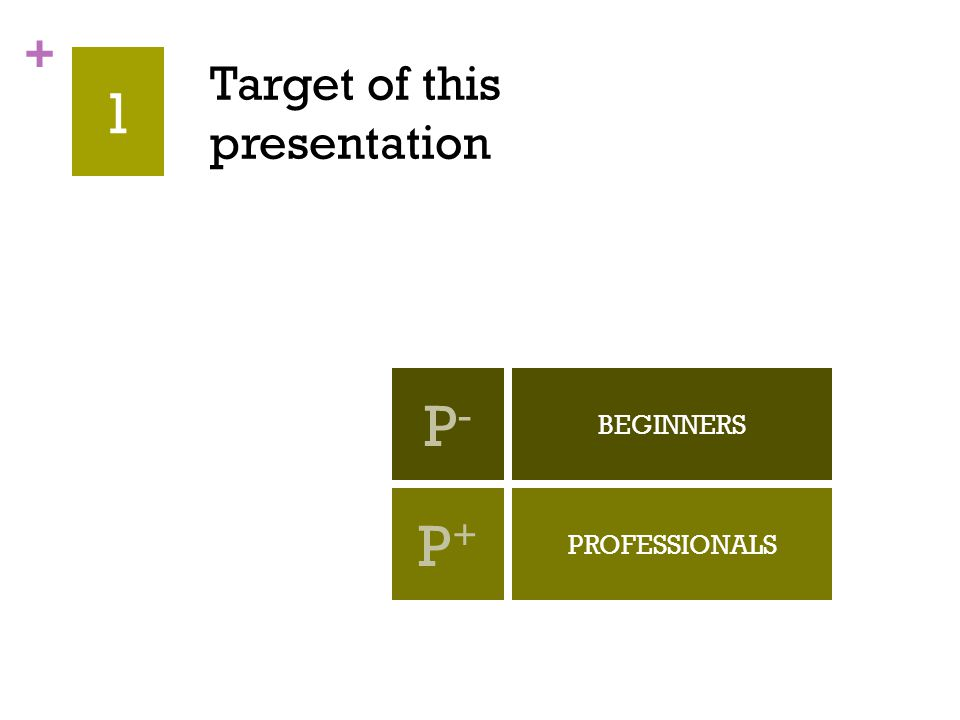 + 1 Target of this presentation BEGINNERS PROFESSIONALS P-P- P+P+