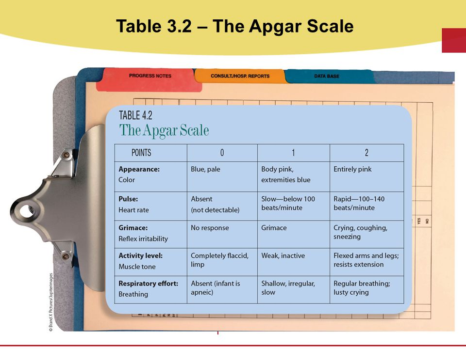 Table 3.2 – The Apgar Scale