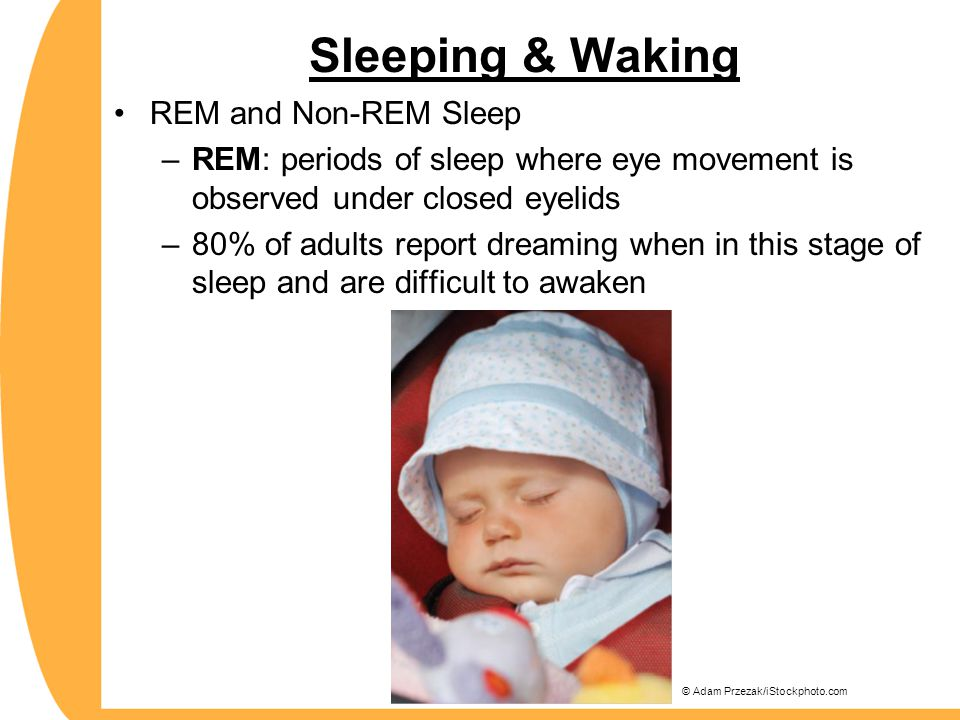 Sleeping & Waking REM and Non-REM Sleep –REM: periods of sleep where eye movement is observed under closed eyelids –80% of adults report dreaming when