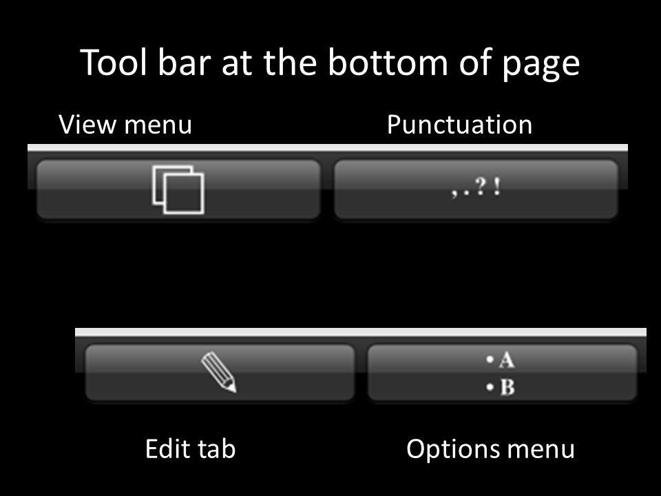 Tool bar at the bottom of page View menuPunctuation Edit tabOptions menu