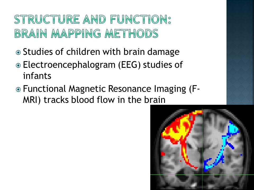  Studies of children with brain damage  Electroencephalogram (EEG) studies of infants  Functional Magnetic Resonance Imaging (F- MRI) tracks blood