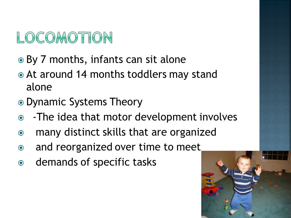  By 7 months, infants can sit alone  At around 14 months toddlers may stand alone  Dynamic Systems Theory  -The idea that motor development involv