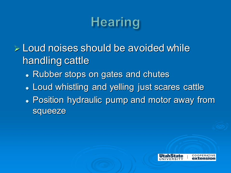  Loud noises should be avoided while handling cattle Rubber stops on gates and chutes Rubber stops on gates and chutes Loud whistling and yelling just scares cattle Loud whistling and yelling just scares cattle Position hydraulic pump and motor away from squeeze Position hydraulic pump and motor away from squeeze