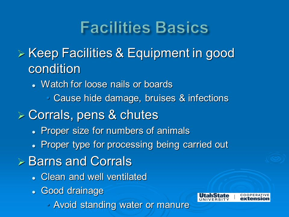  Keep Facilities & Equipment in good condition Watch for loose nails or boards Watch for loose nails or boards Cause hide damage, bruises & infectionsCause hide damage, bruises & infections  Corrals, pens & chutes Proper size for numbers of animals Proper size for numbers of animals Proper type for processing being carried out Proper type for processing being carried out  Barns and Corrals Clean and well ventilated Clean and well ventilated Good drainage Good drainage Avoid standing water or manureAvoid standing water or manure