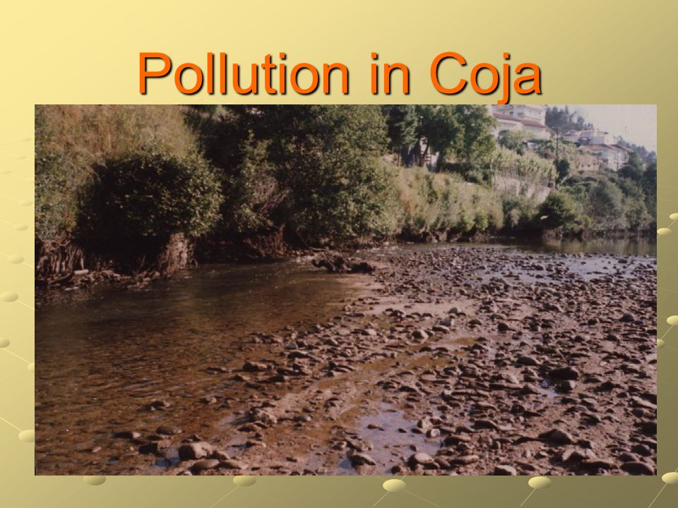 Pollution in Coja