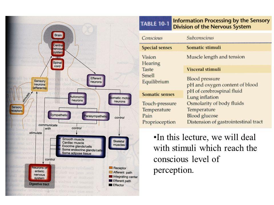 References 1.Tortora, G.J.& Grabowski, S.R (2003).