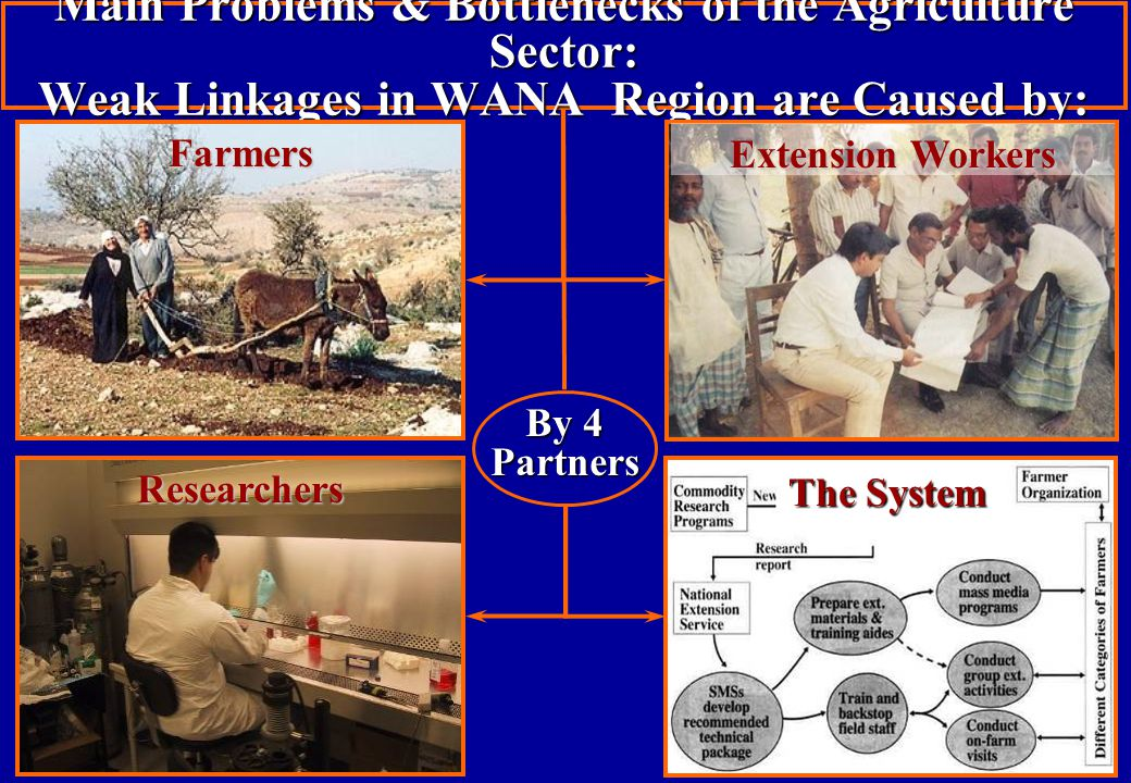 Main Problems & Bottlenecks of the Agriculture Sector: Weak Linkages in WANA Region are Caused by: Farmers Researchers By 4 Partners The System Extension Workers
