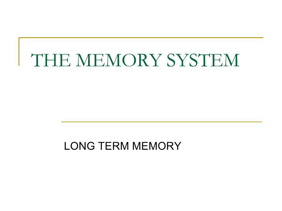 THE MEMORY SYSTEM LONG TERM MEMORY
