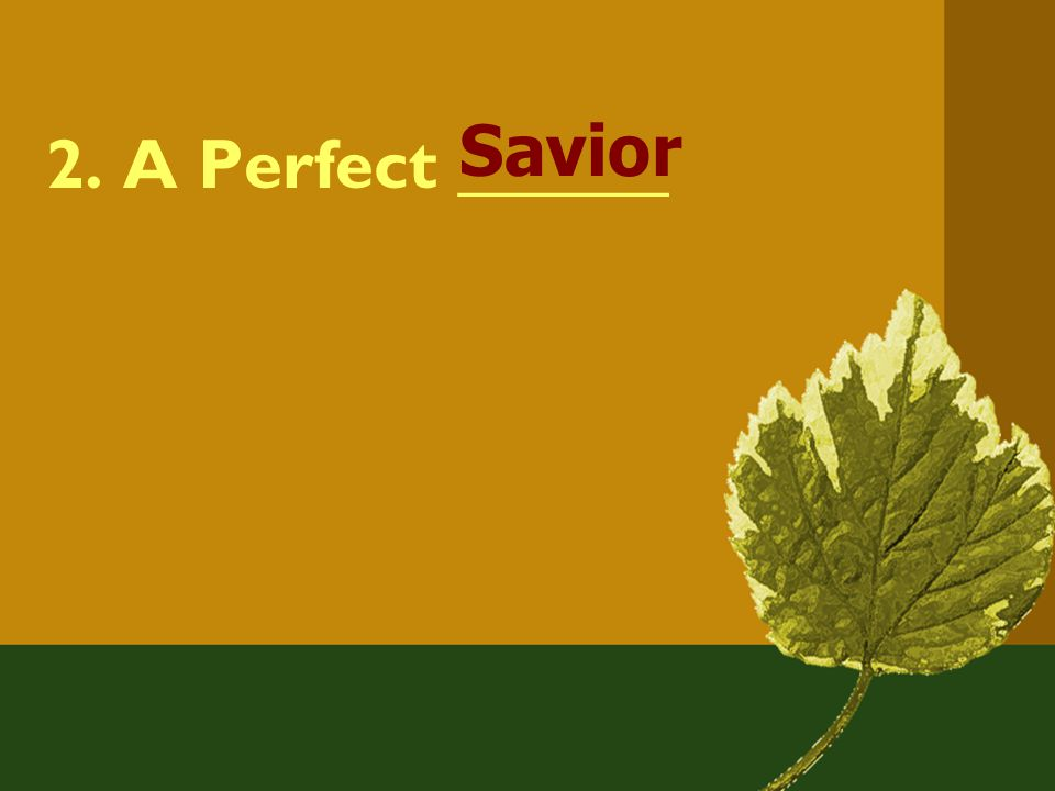 2. A Perfect ______ Savior