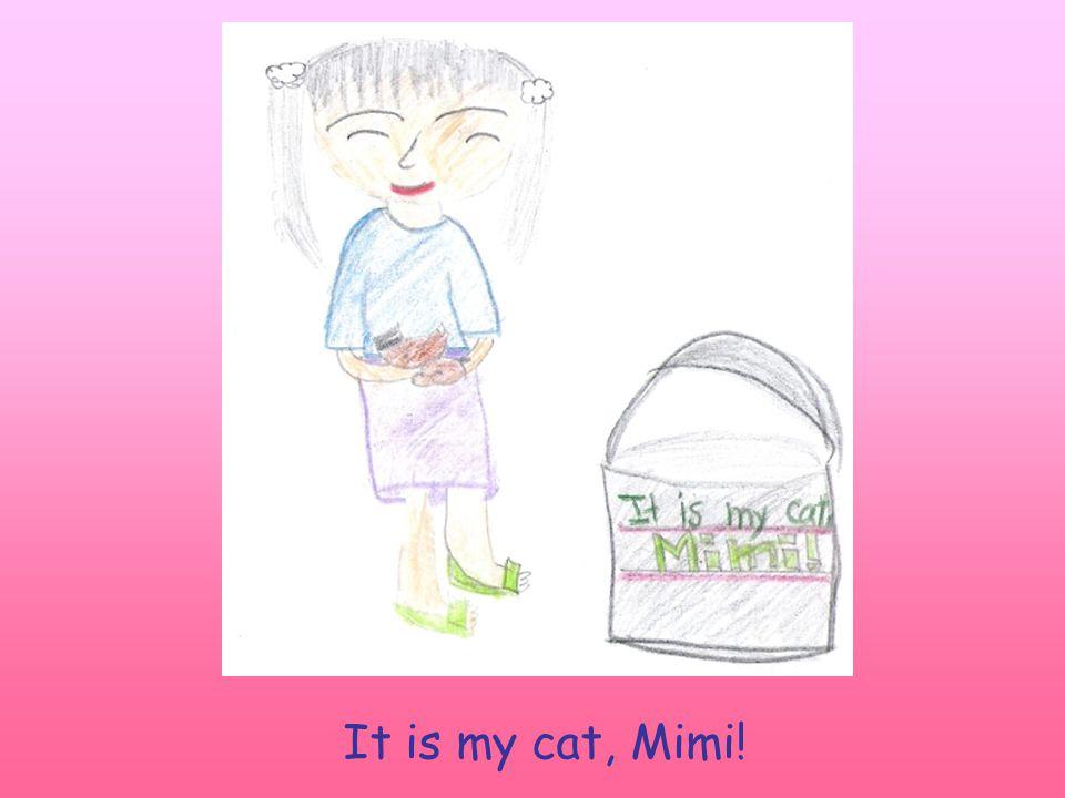 It is my cat, Mimi!