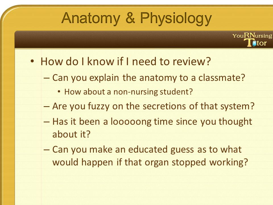 How do I know if I need to review? – Can you explain the anatomy to a classmate? How about a non-nursing student? – Are you fuzzy on the secretions of