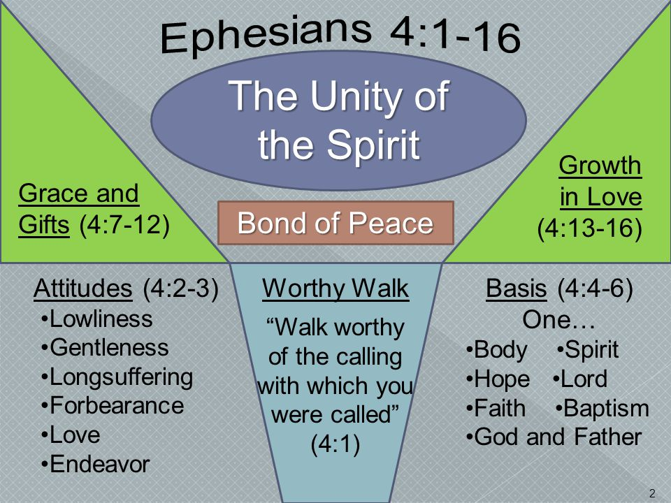 The Unity of the Spirit Bond of Peace 2 Attitudes (4:2-3) Lowliness Gentleness Longsuffering Forbearance Love Endeavor Basis (4:4-6) One… Body Spirit
