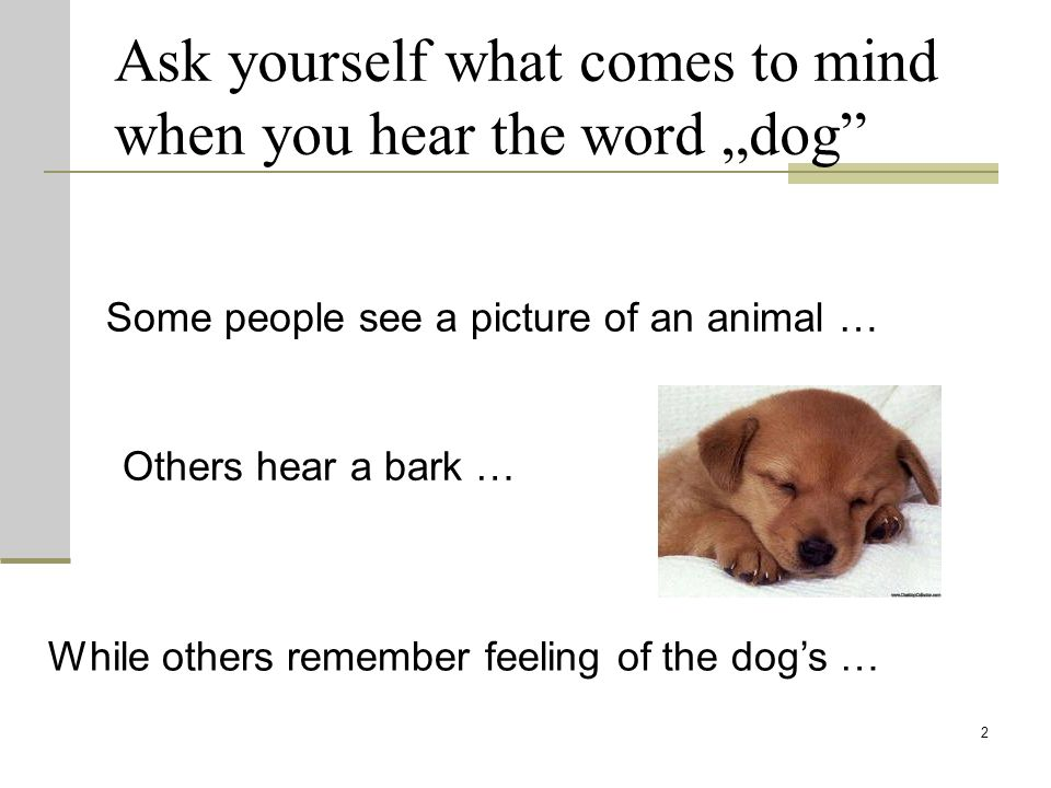 """Ask yourself what comes to mind when you hear the word """"dog"""" 2 Some people see a picture of an animal … Others hear a bark … While others remember fee"""