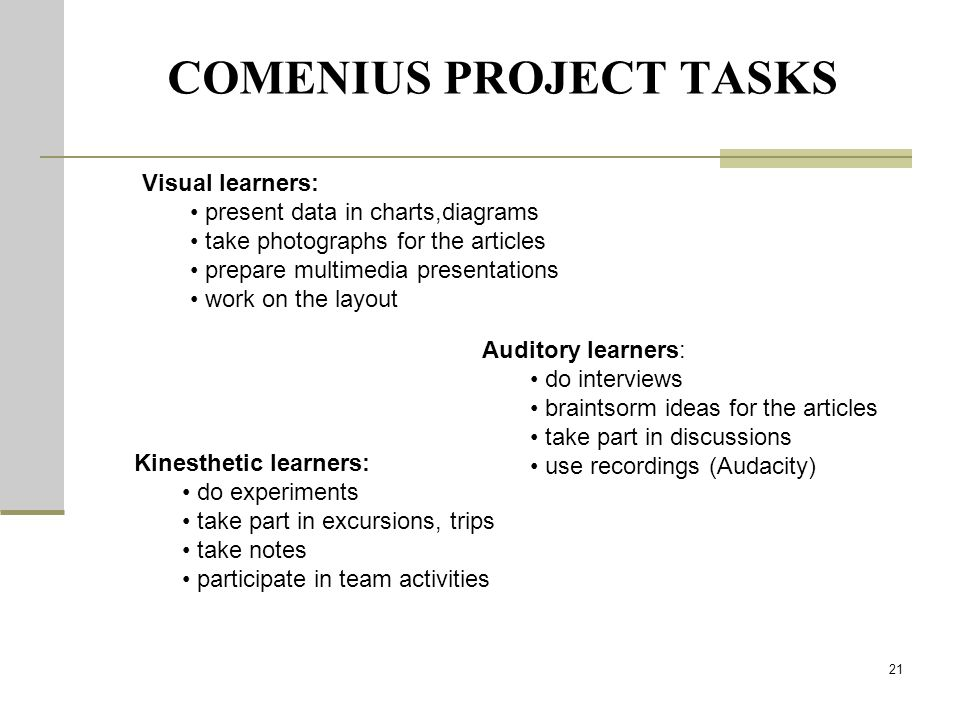 COMENIUS PROJECT TASKS 21 Visual learners: present data in charts,diagrams take photographs for the articles prepare multimedia presentations work on