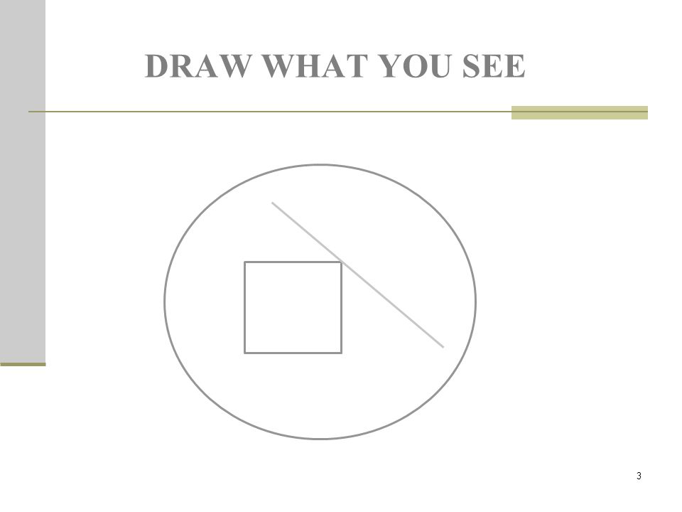 3 DRAW WHAT YOU SEE