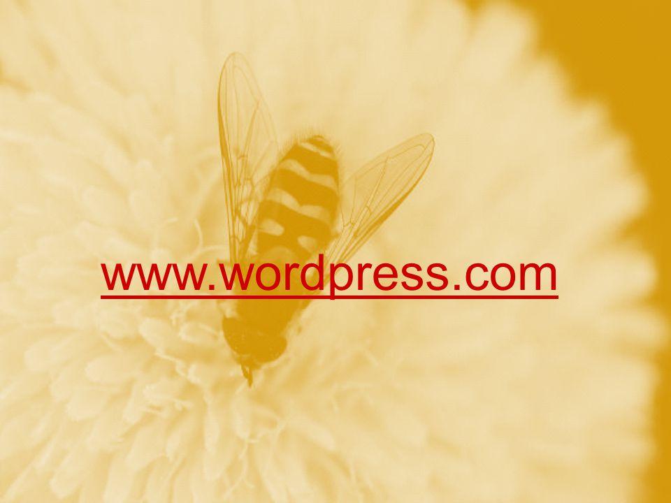 www.wordpress.com