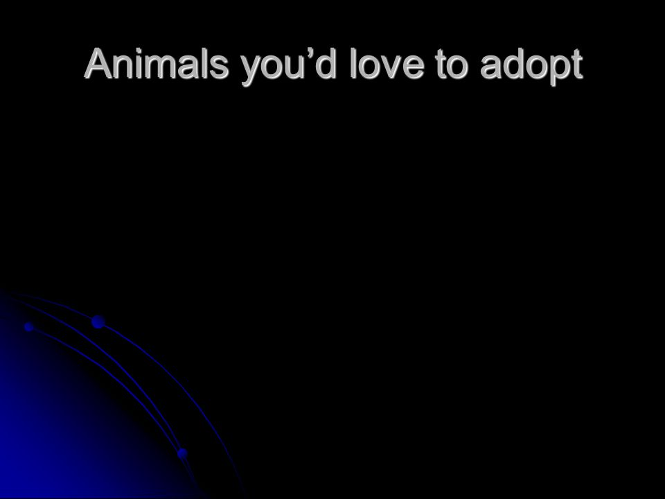 Animals you'd love to adopt