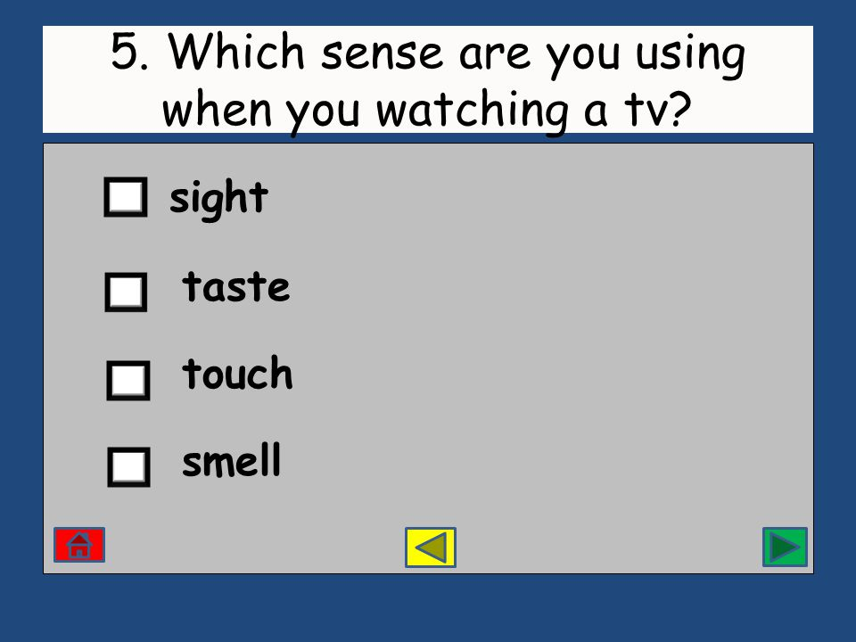 5. Which sense are you using when you watching a tv sight taste touch smell