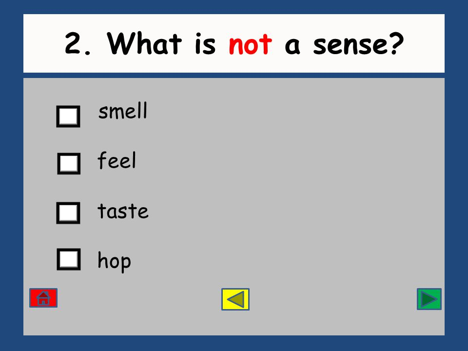 2. What is not a sense smell feel taste hop