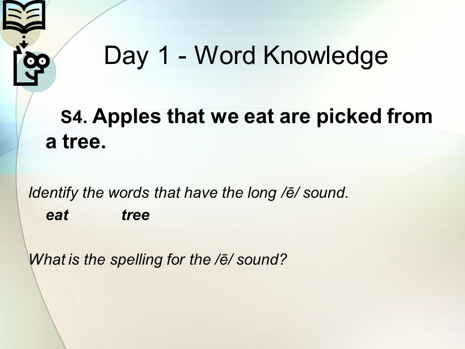 Day 1 - Word Knowledge S4. Apples that we eat are picked from a tree.