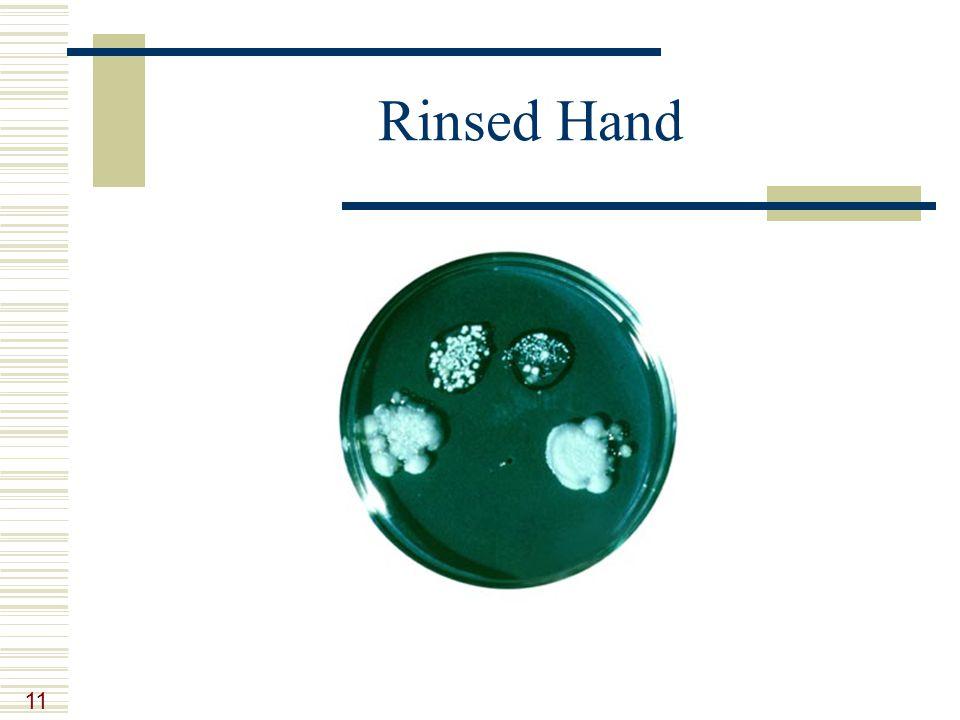 11 Rinsed Hand