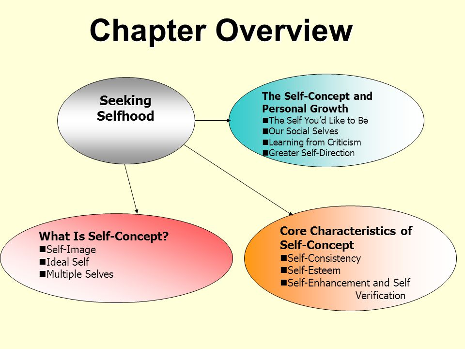 Chapter Overview Core Characteristics of Self-Concept Self-Consistency Self-Esteem Self-Enhancement and Self Verification What Is Self-Concept.