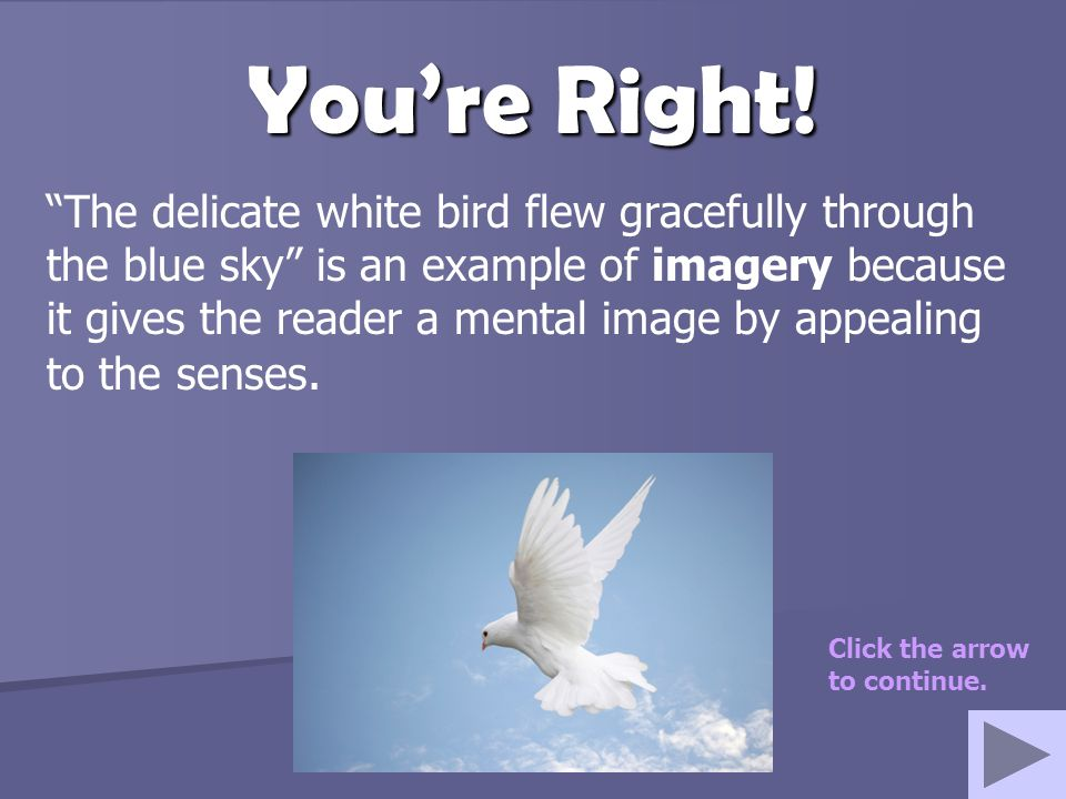 "You're Right! ""The delicate white bird flew gracefully through the blue sky"" is an example of imagery because it gives the reader a mental image by ap"
