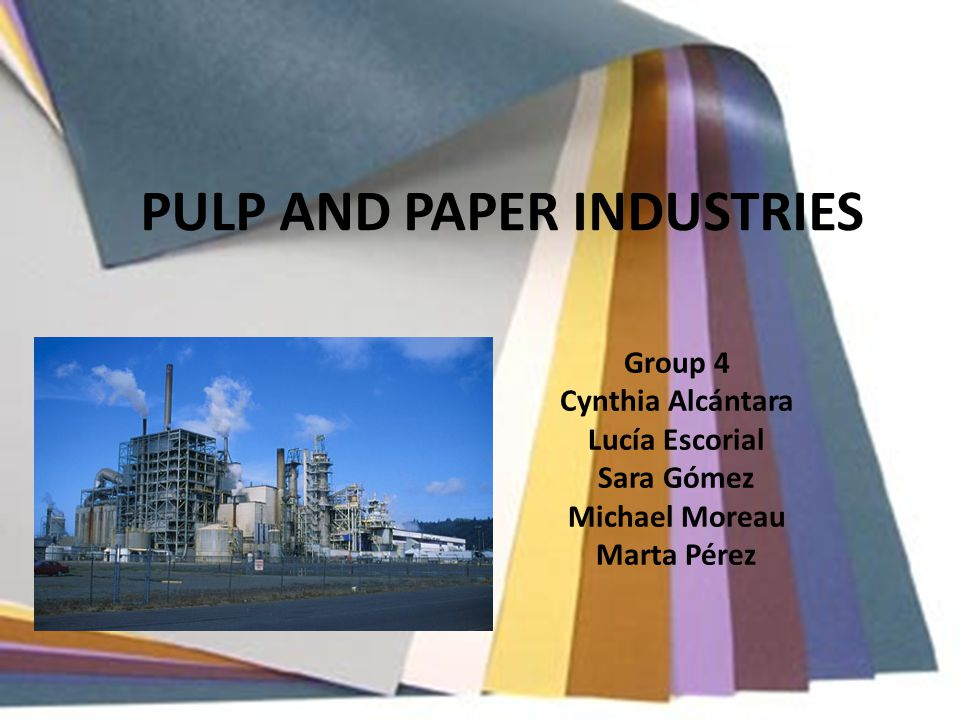 PULP AND PAPER INDUSTRIES Group 4 Cynthia Alcántara Lucía Escorial Sara Gómez Michael Moreau Marta Pérez