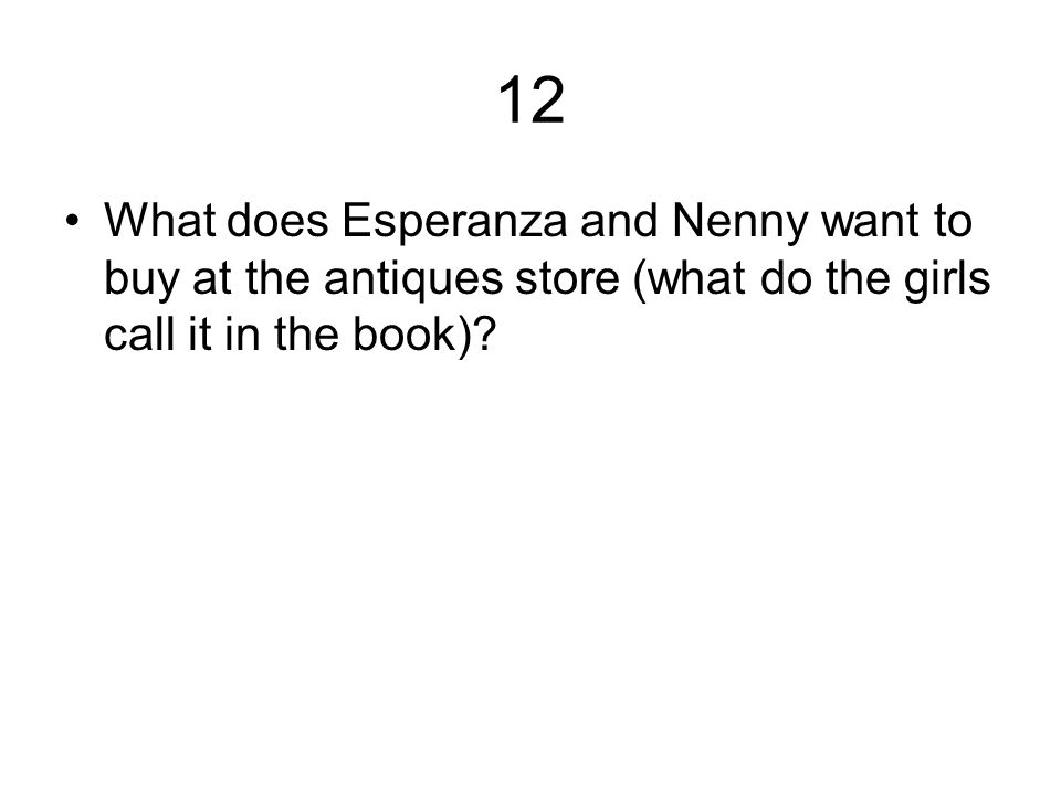 12 What does Esperanza and Nenny want to buy at the antiques store (what do the girls call it in the book)