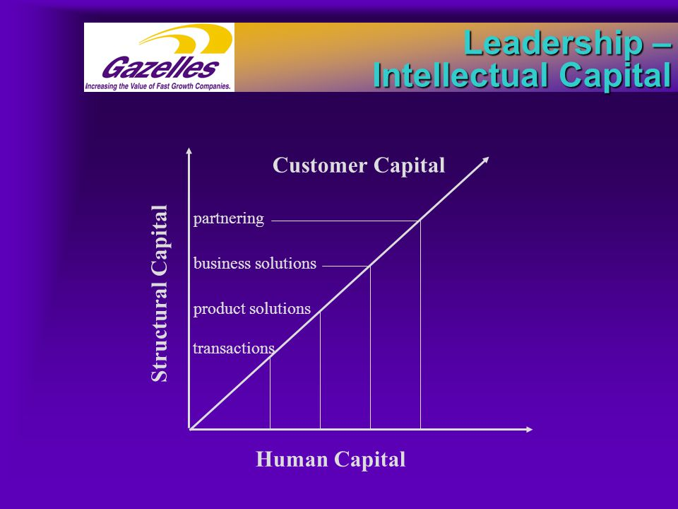 Leadership – Intellectual Capital transactions product solutions business solutions partnering Human Capital Customer Capital Structural Capital