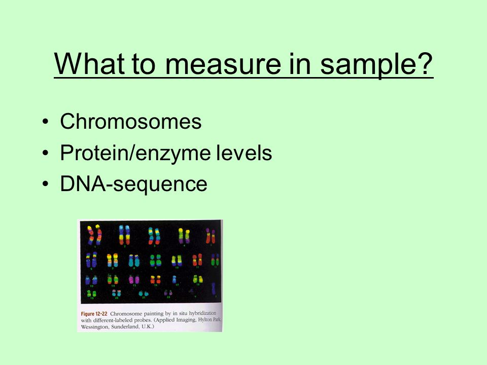 What to measure in sample? Chromosomes Protein/enzyme levels DNA-sequence