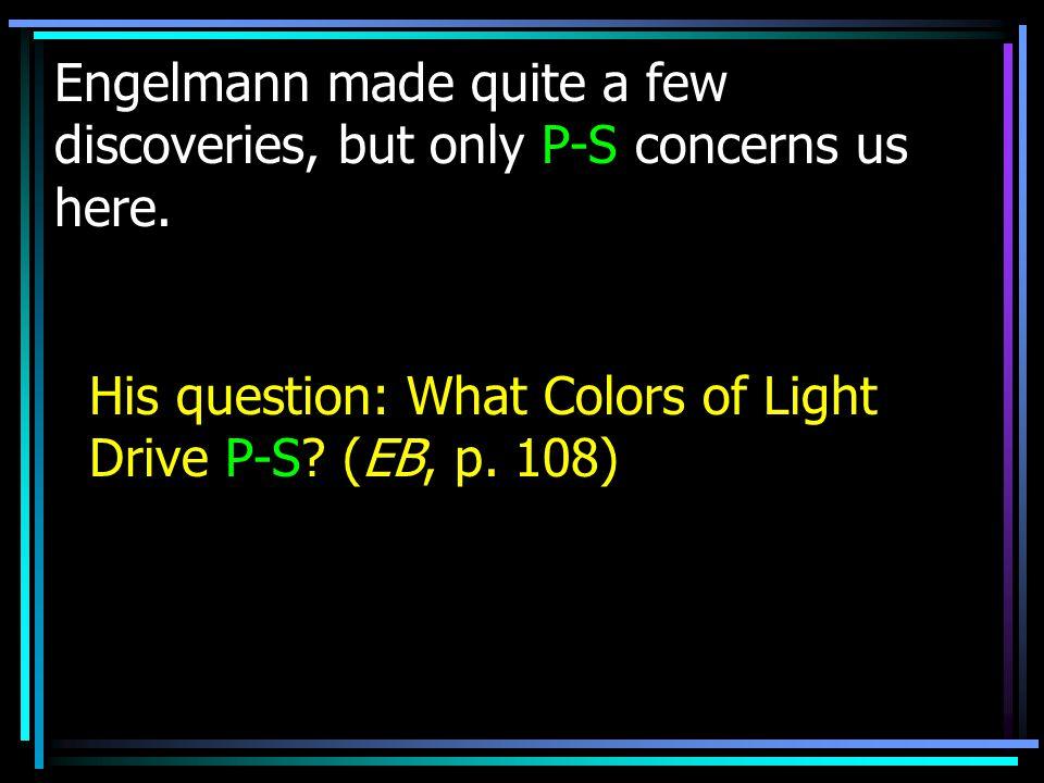 Now, let's explore a few implications of Engelmann s research:
