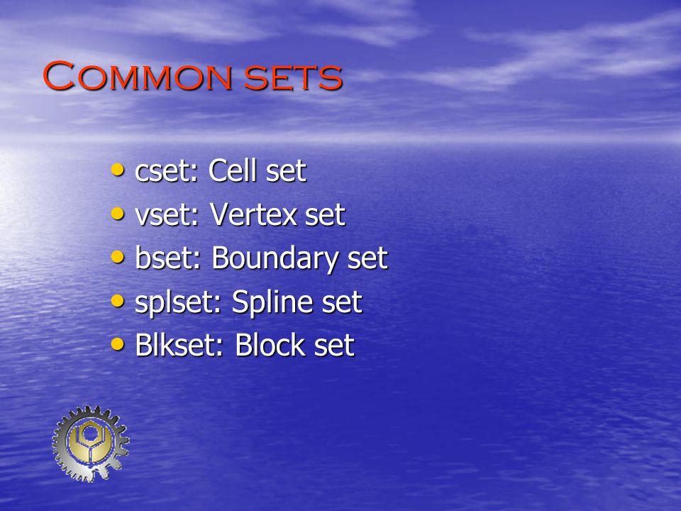 Common sets cset: Cell set cset: Cell set vset: Vertex set vset: Vertex set bset: Boundary set bset: Boundary set splset: Spline set splset: Spline set Blkset: Block set Blkset: Block set