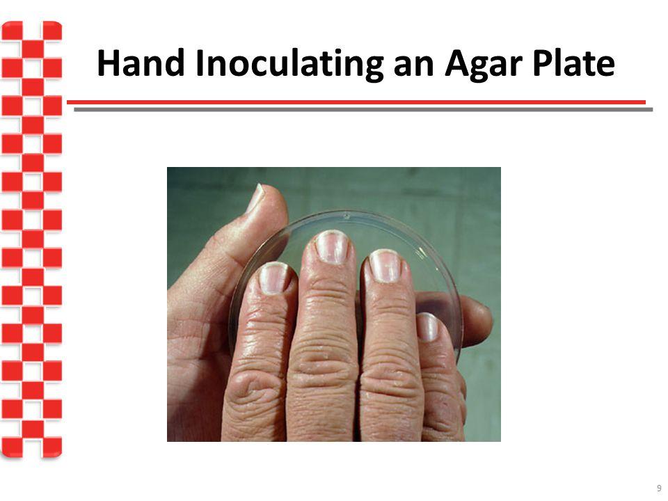 Hand Inoculating an Agar Plate 9