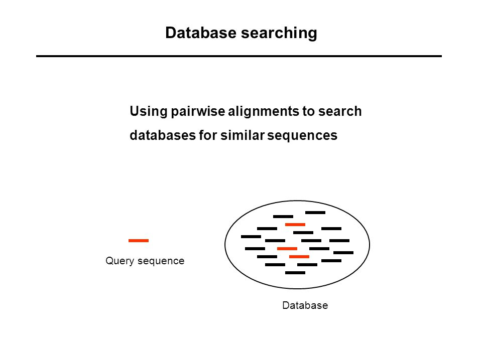 Database searching Using pairwise alignments to search databases for similar sequences Database Query sequence