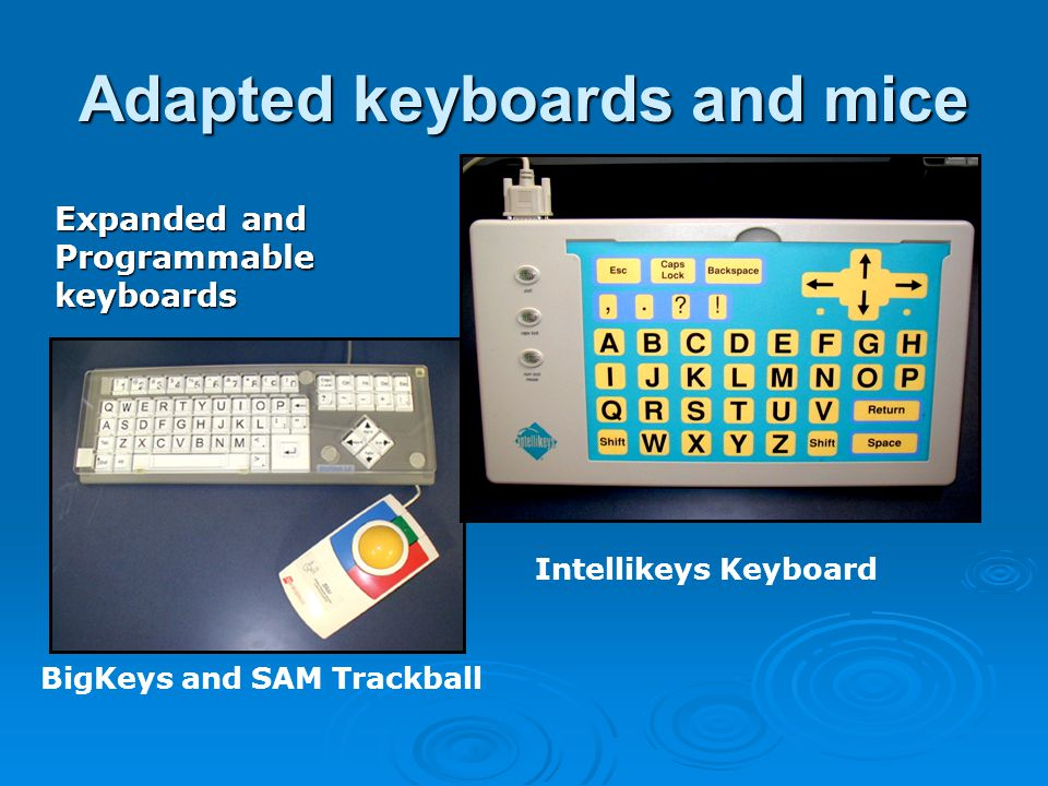 Adapted keyboards and mice Expanded and Programmablekeyboards BigKeys and SAM Trackball Intellikeys Keyboard