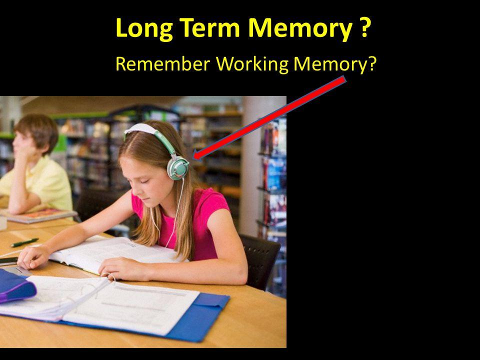 Long Term Memory Remember Working Memory